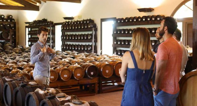 Tour dell'Aceto Balsamico